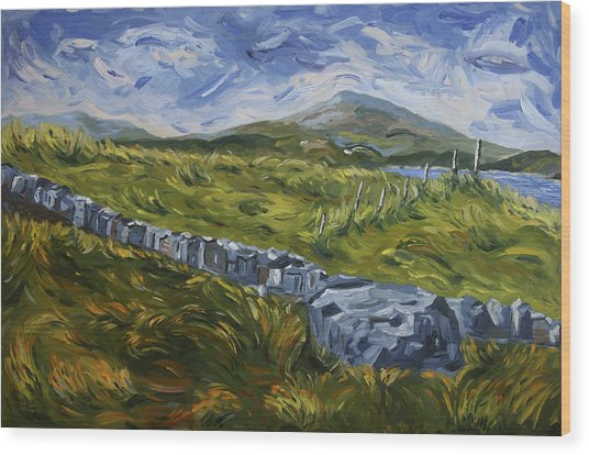 A Donegal Day Wood Print
