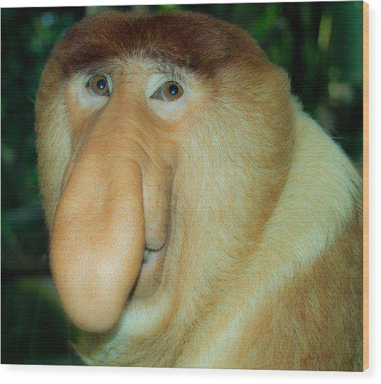 A Gentle Ape Wood Print