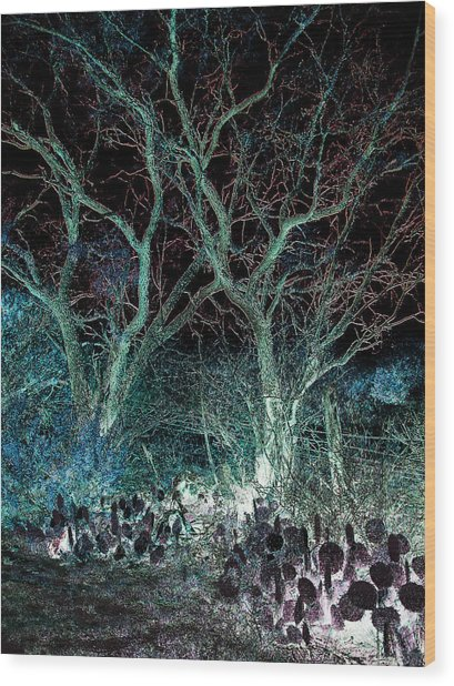 A Ghost Story Told On March Road Wood Print