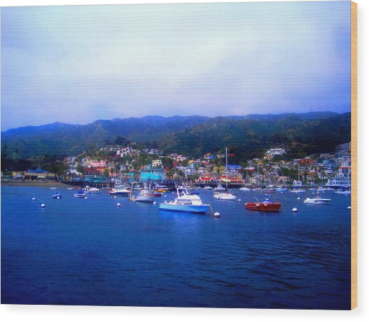 A Misty Morning In Avalon Harbor Wood Print by Catherine Natalia  Roche