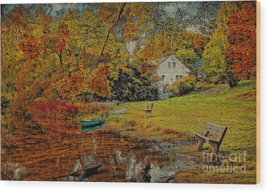 A Pond View Wood Print