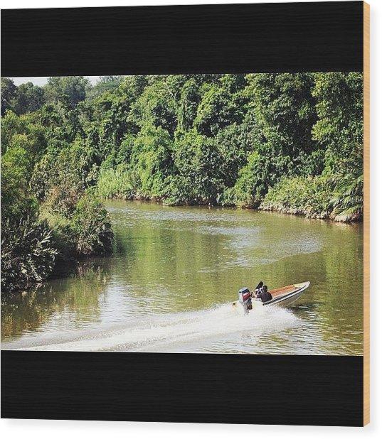 A Ride Amongst The Mangroves, Taken Wood Print