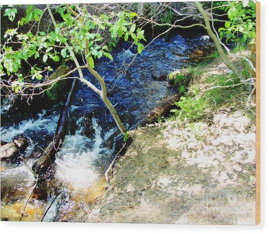 A Small Creek Wood Print