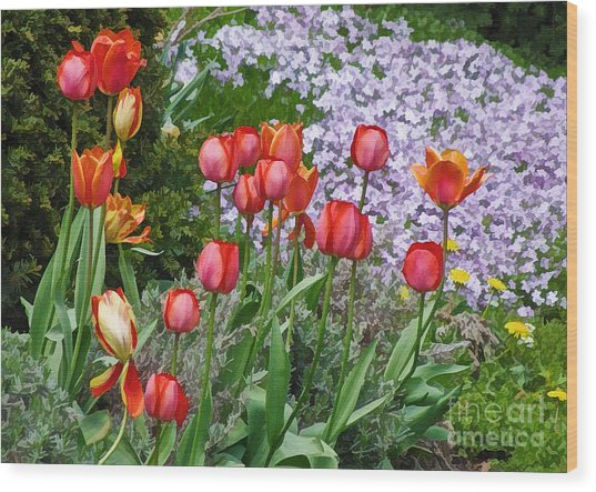 A Spring Feast Of Colours Wood Print