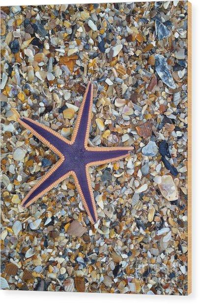 A Star Among Us Wood Print