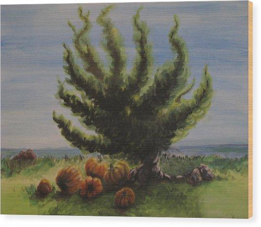 A Sunny Day At The Bay Of Pumpkins Wood Print