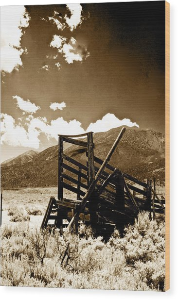 Abandoned Cattle Shoot Wood Print