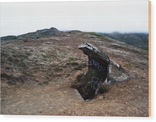 Abandoned Entrance Wood Print