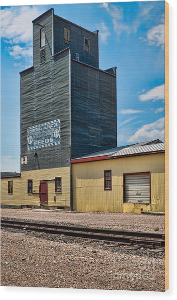 Abandoned Feed Elevator Wood Print by Lawrence Burry