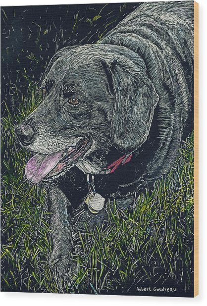 Abbe The Dog Wood Print by Robert Goudreau