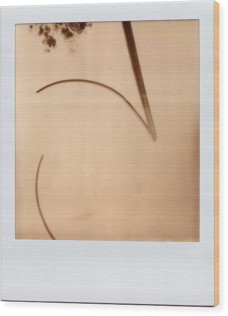 Abstract Instant 1 Wood Print
