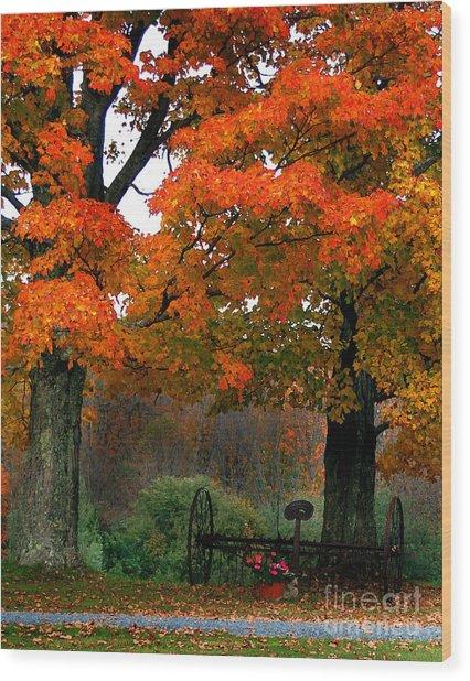 Adirondack Palette Wood Print