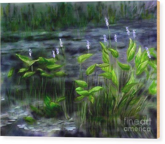Adirondacks Natural Wetlands Pickeral Plant Wood Print by Judy Filarecki
