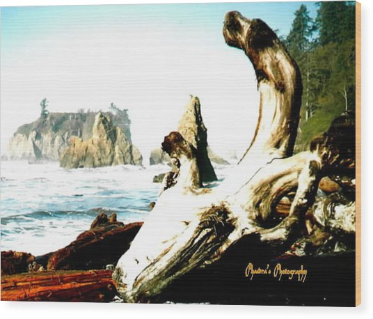 Adrift At Sea Wood Print