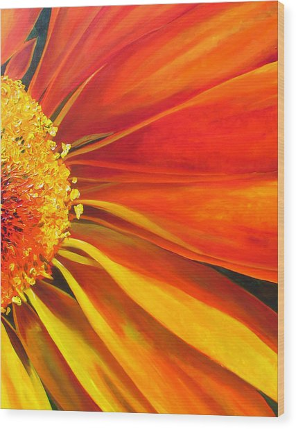 African Daisy Wood Print by Raette Meredith