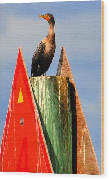 Afternoon Fishing Wood Print by Barry R Jones Jr