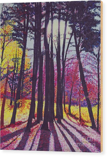 Afternoon Forest Wood Print