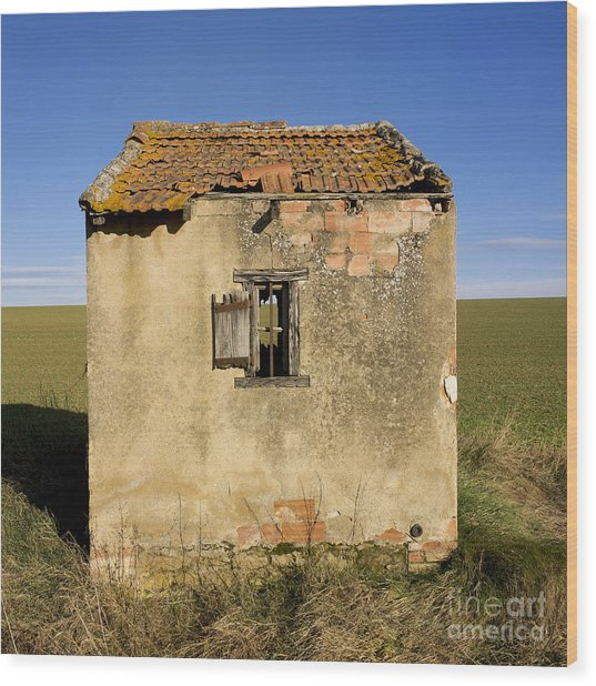 Aged Hut In Auvergne. France Wood Print