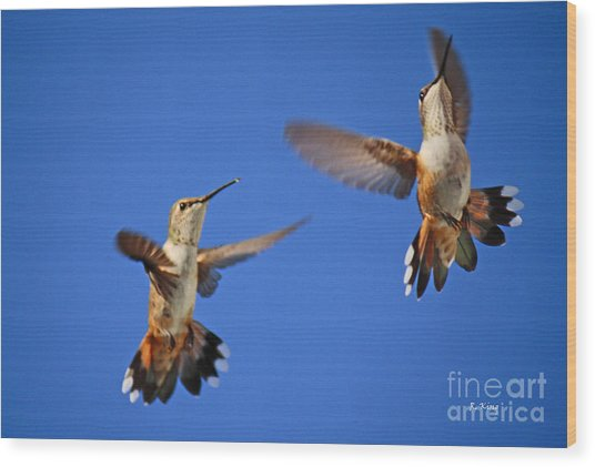 Air Dance Wood Print