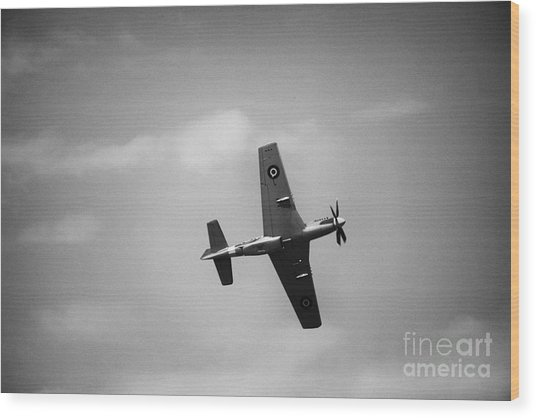 Air Show 1 Wood Print by Darcy Evans