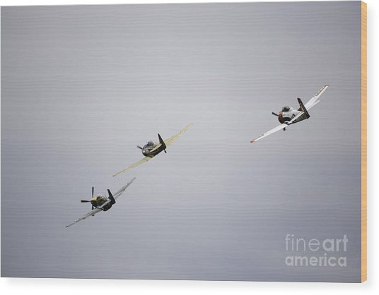 Air Show 13 Wood Print by Darcy Evans