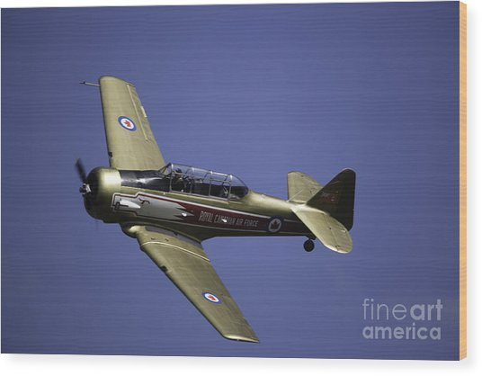 Air Show 16 Wood Print by Darcy Evans