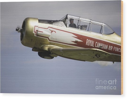 Air Show 7 Wood Print by Darcy Evans