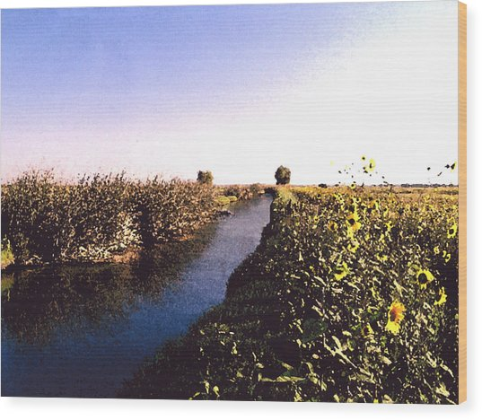 Airport Canal Wood Print by Eunice Olson