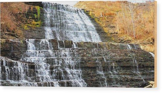 Albion Falls  Wood Print