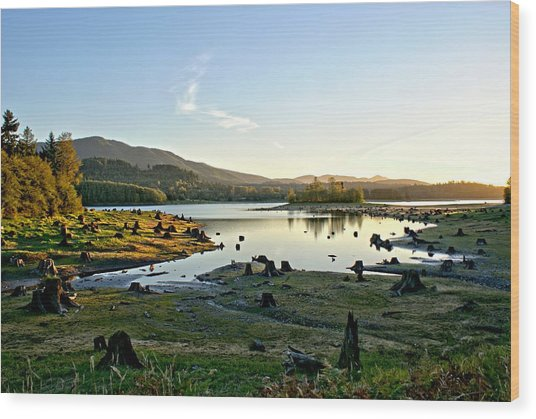 Alder Lake Wa At Sunset Wood Print