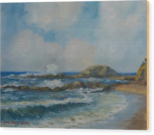 Aliso Beach Wood Print