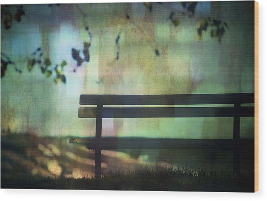 All On A Summers Evening Wood Print