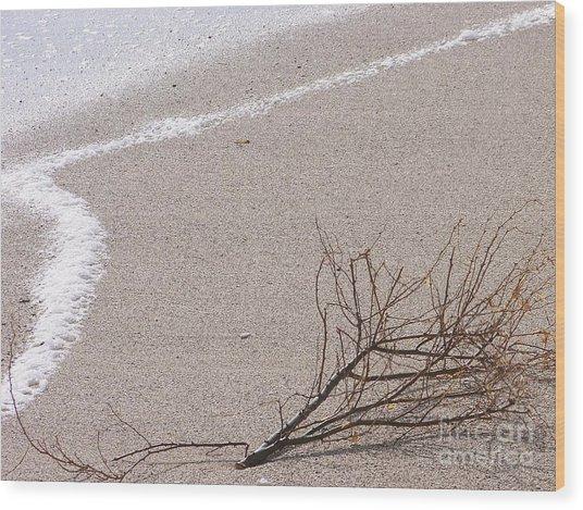 Alone - Ile De La Reunion Wood Print by Francoise Leandre