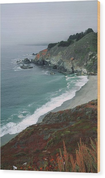 Along The Pacific Coast Wood Print