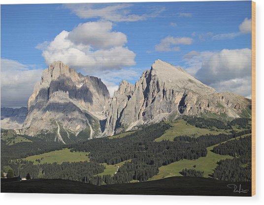 Alpe Di Siusi Wood Print