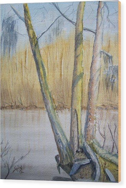 Altamaha River Three Trees Wood Print by Spencer  Joyner