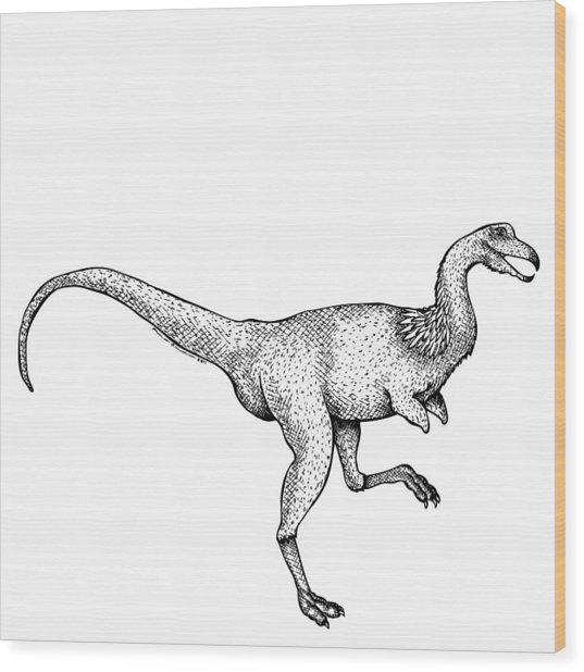 Alvarezsaurus - Dinosaur Wood Print by Karl Addison