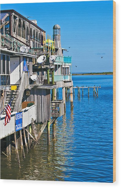Always Blue - Cedar Key Wood Print