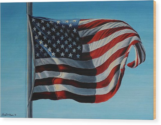 America The Beautiful Wood Print by Daniel W Green