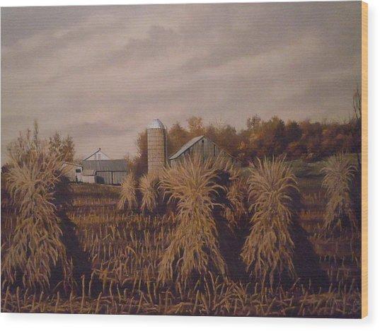 Amish Farm In Autumn Wood Print