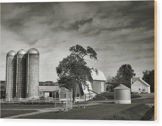 Amish Farmstead II Wood Print by Steven Ainsworth
