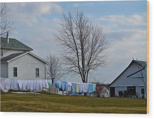 Amish Laundry Wood Print by Brenda Becker