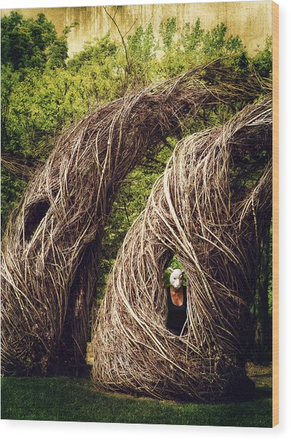 Among The Hidden Wood Print by Laura George