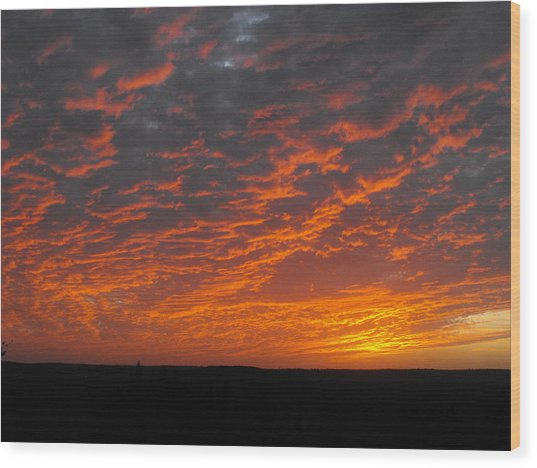 An Awesome Texas Sunset Wood Print by Rebecca Cearley