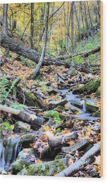 An Uphill Battle Wood Print by JC Findley