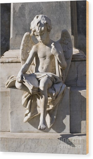 Angel Of Baroque Wood Print