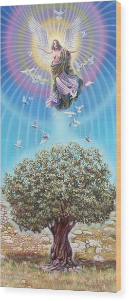 Angel Over The Olive Tree Wood Print by Miguel Tio