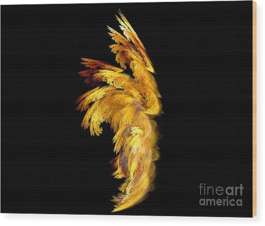 Angel Wings 1 Wood Print