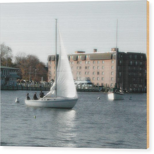 Annapolis Sail Boat Wood Print