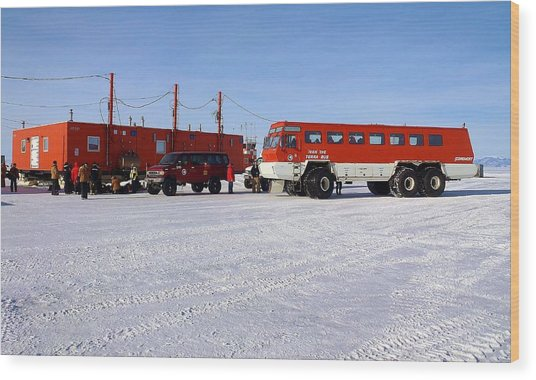 Antarctic Tundra Bus Wood Print by David Barringhaus